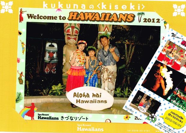 hawaiitop.jpg
