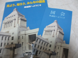 400-IMG_5943.jpg